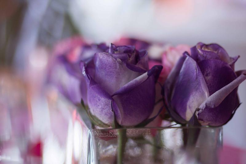 IMG_1754 July 22, 2012Melissa y Edward Wedding Day