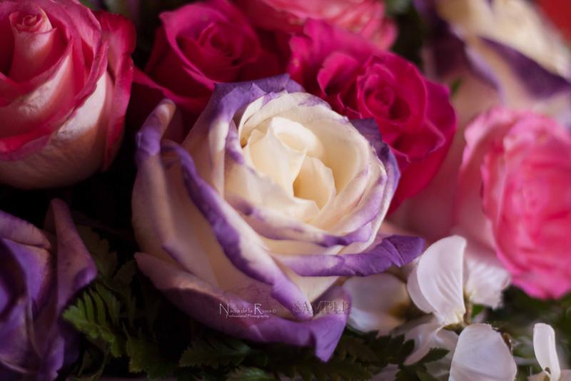 IMG_1792 July 22, 2012Melissa y Edward Wedding Day