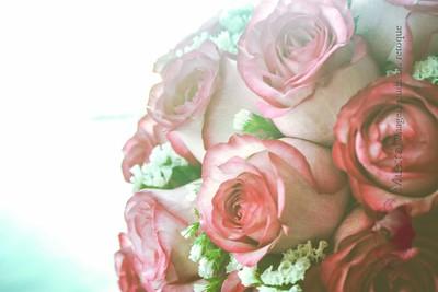 IMG_0835 November 29, 2014 Wedding Day Ana y Rafael_