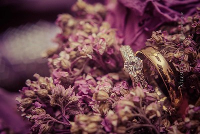 IMG_9252 November 08, 2014 Wedding Day  Evelyn y Smaelyn