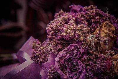 IMG_9248 November 08, 2014 Wedding Day  Evelyn y Smaelyn