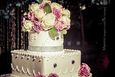 IMG_9289 November 08, 2014 Wedding Day  Evelyn y Smaelyn