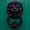 Lion Shaped brass door handle knob banger on a green door. Ireland.