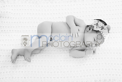 Casen Newborn Session