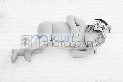 Casen Newborn Session