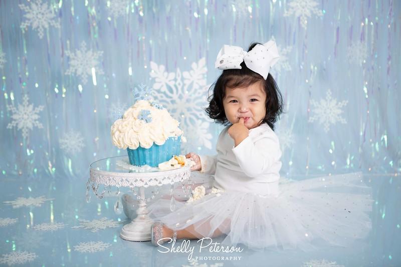 Winter One-derland Cake Smash with Iridescent Curtain