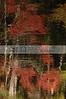 Holly Rock Oct 27 28 29 2006 078