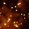 Video barcarolata 2009 Sestri Levante (Italy); fireworks