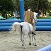 Rossano Ranch, Sestri Levante, 4 aprile 2010.