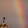 Sestri Levante, rainbow.