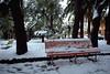 Snow in Sestri Levante<br /> <br /> Sestri Levante innevata