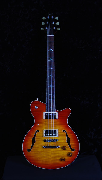 Don Grosh DG-193 in Dark Cherry Sunburst, HH Pickups