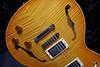 Don Grosh DG-193 in Vintage Maple Burst, HH Pickups