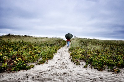 rainy day on Dowses Beach in Osterville