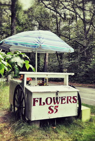 sun umbrella on a flower stand in Marstons Mills...