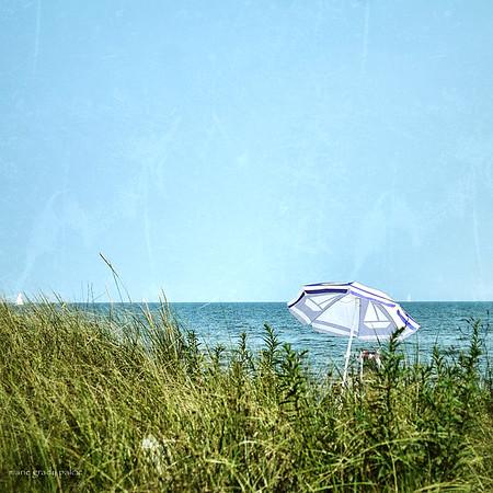 beach unbrella on a hidden cove in Cotuit...