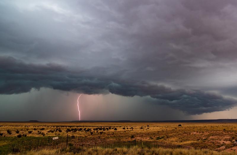 New Mexico Bolt