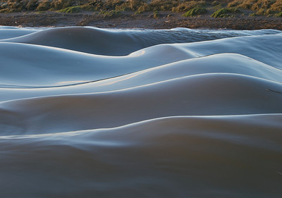 Love the ripples and curves from these gravity waves. The water was alive. Another aspect of the Severn Bore that very few people witness close up. All photos captured with Olympus E3 and 12-60mm/50-200mm SWD lenses.