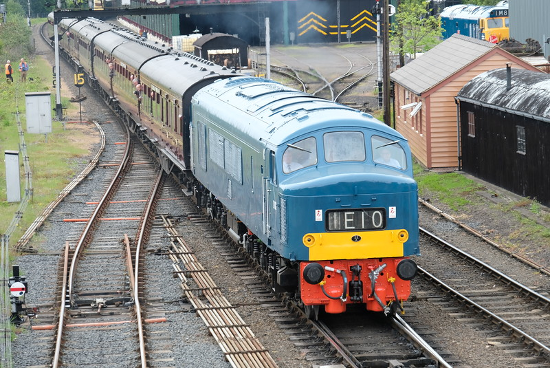 D 182 at Severn Valley Diesel Gala 2016