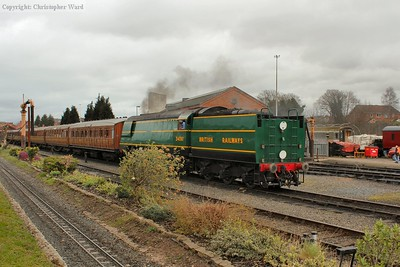 34081 brightening up a grey day