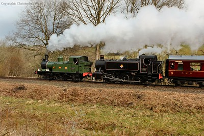 1501 and 1450 provide a pleasing contrast