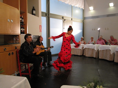 Flamenco at Hotel Becquer