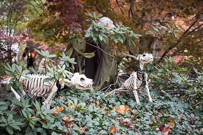 Bouchard-Halloween-6