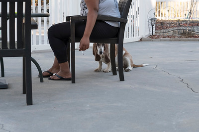 A resident takes a smoke break on the patio as Sadie, the resident Bassett Hound closely watches me. (Sadie does not like men.)