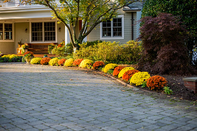 7 Oak Tree Lane - landscaping done by Shady Tree Landscaping