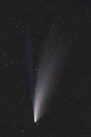 Comet C/2020 F3 (NEOWISE) with dust and ion tail