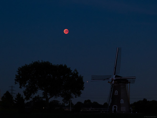 Lunar Eclipse above 'De Korenbloem'