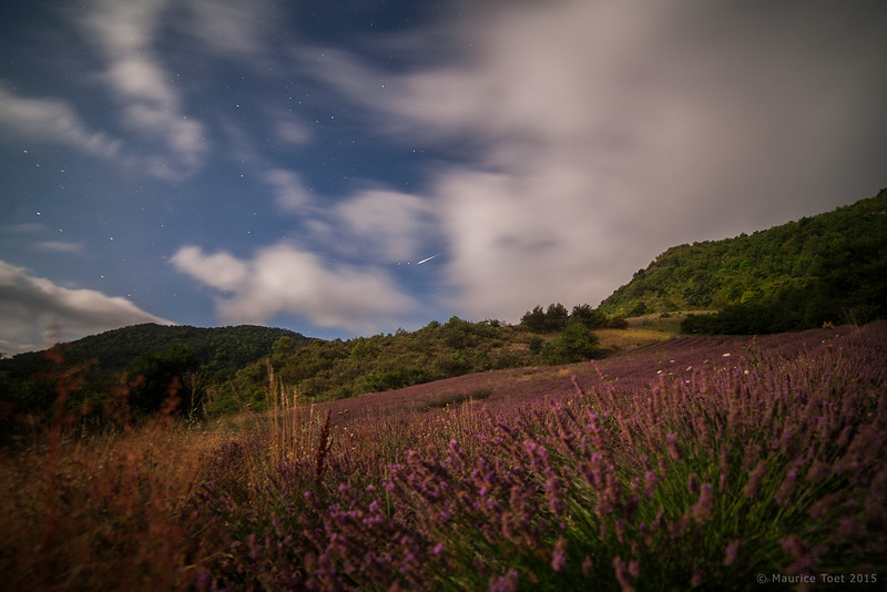 Meteor above Lavender Field