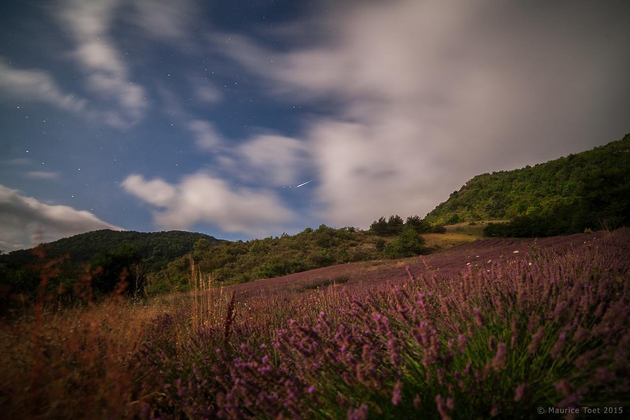 Meteor above Lavender Field