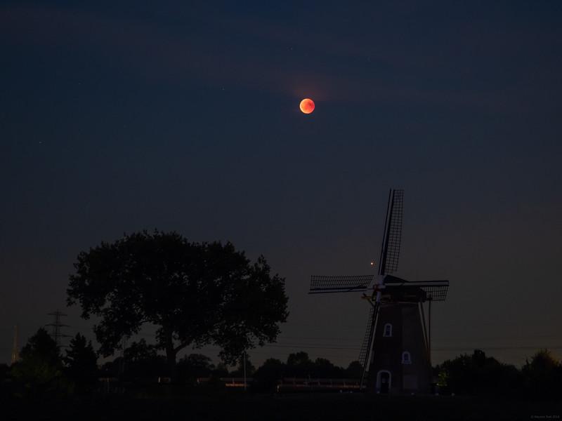 Lunar Eclipse above 'De Korenbloem'