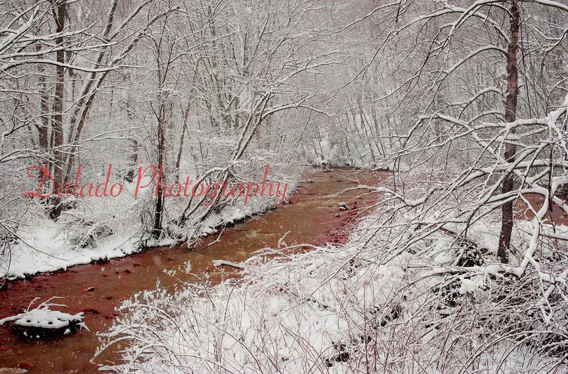(2014) Shamokin Creek in all its glory.