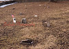(2014) Cherry Family Cemetery at Berry's- This is the first cemetery in the Shamokin/Coal Township area. It is located along Route 61 at Berry's, near Burger King...