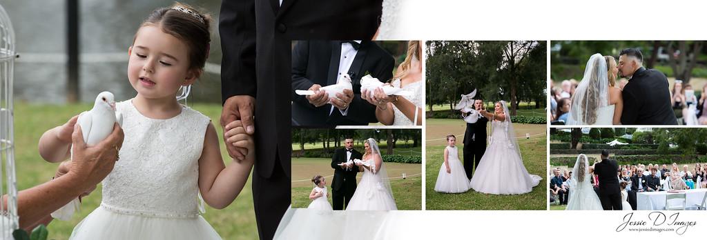Jessie D Images - Wedding Seble - Crowne Plaza weddings - ceremony doves