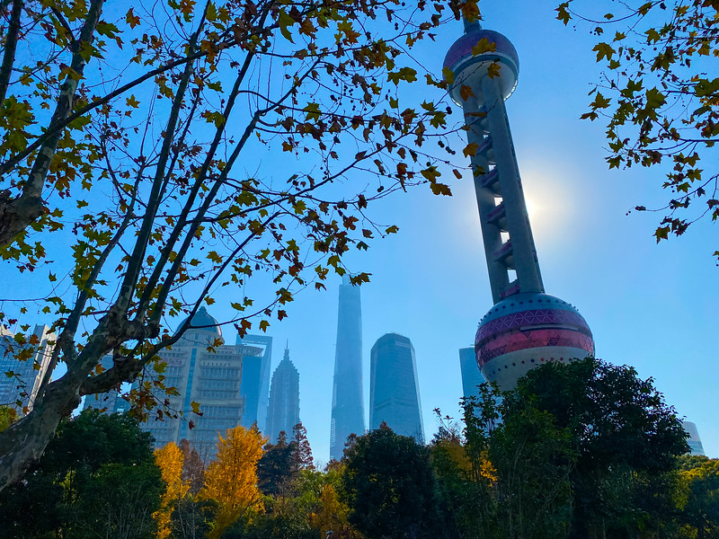 Chilly morning walk around Shanghai.