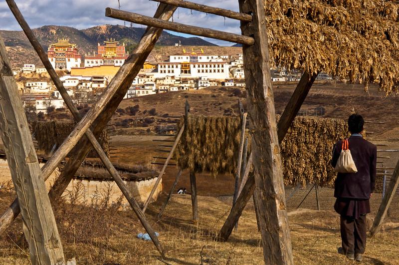 Un paysan tibétain admirant le monastère de Songzanlin. Province du Yunnan/Chine