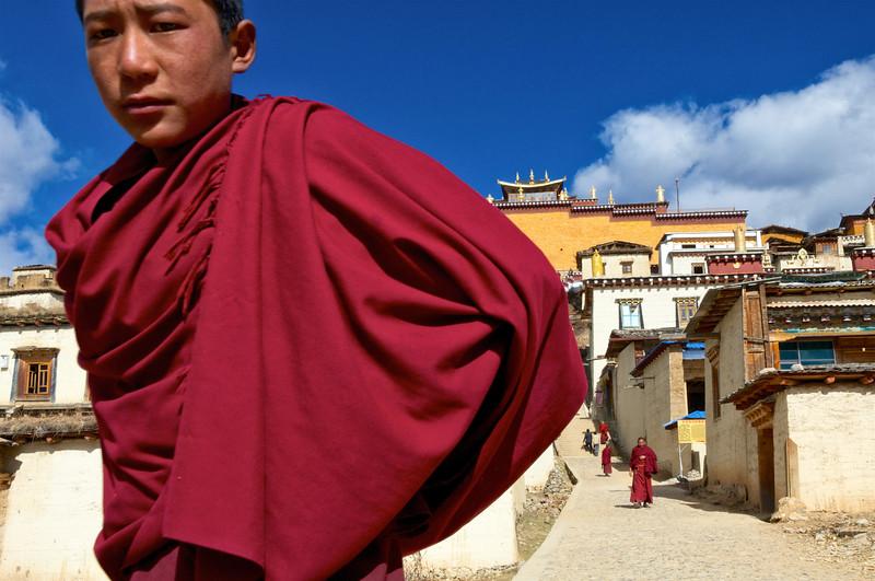 Jeune moine descendant du monastère de Songzanlin. Province du Yunnan/Chine