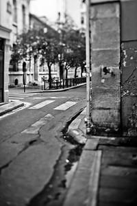 Birdie. Paris