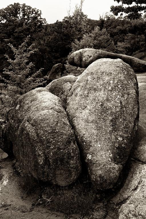 Butt Rock