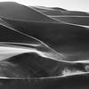 The Shapes of Namib XXII