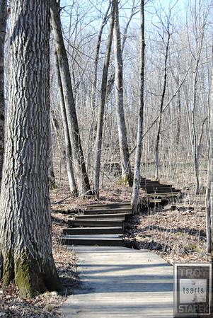 Big Woods Stairway 4-11