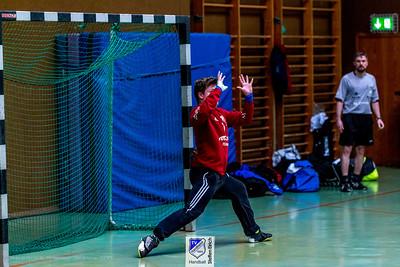 Handball Landesliga Nord A-Jugend: TV Hardheim-TSV Birkenau (22:37)