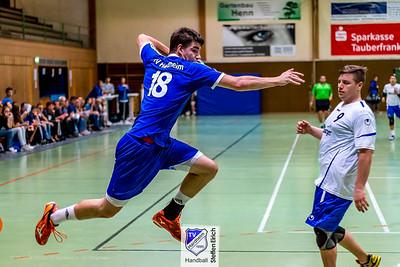 TV Hardheim Handball - Heimspieltag Runde 2016/17