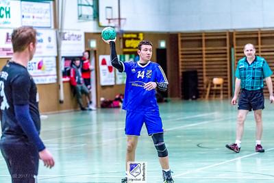 Handball Landesliga: TVHA-TV Sinsheim (36:22)