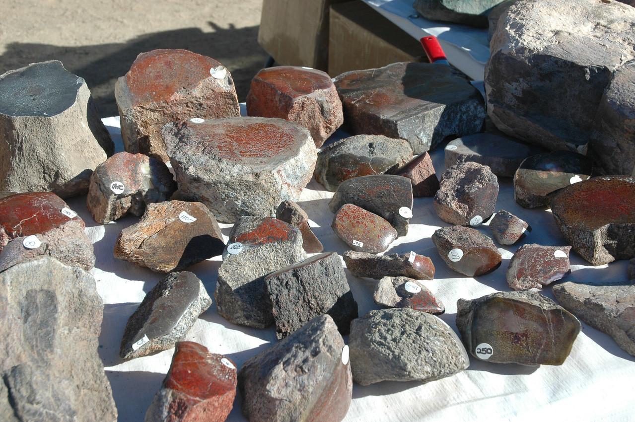 More fossilized dino bone.