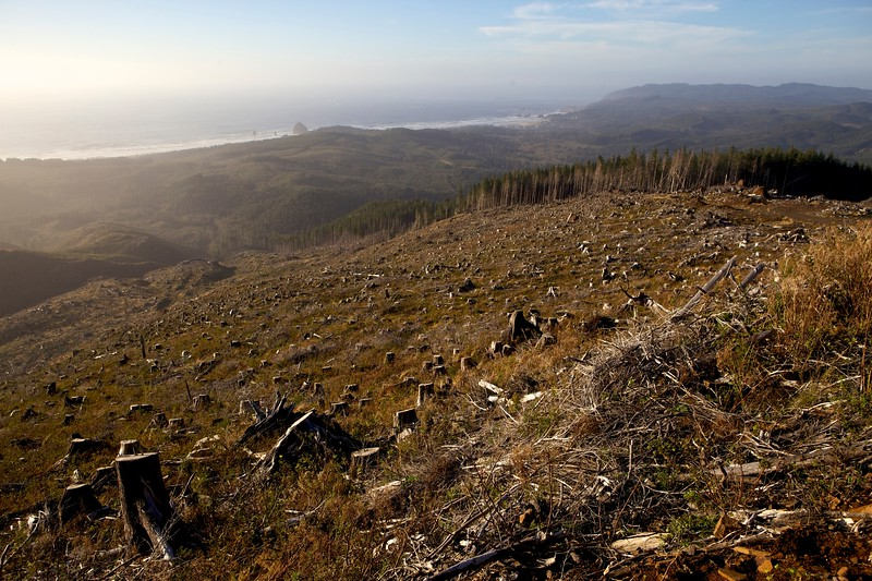 The view from the top of a Peinhardt Peak overlooks Cannon Beach and the Oregon Coast.