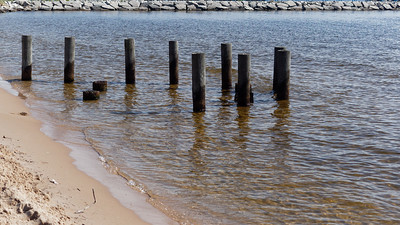 Beach, with Pilings